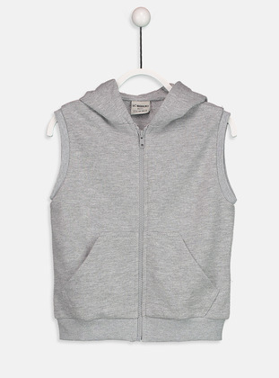 Gray - Boys` Jacket - LC WAIKIKI