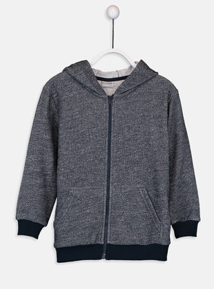 Gray - Boys` Sweatshirt - LC WAIKIKI