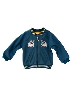 Blue -  - V neck Collar - baby jackets