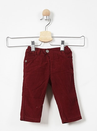 Cotton - Maroon - Baby Pants