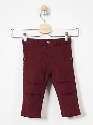 - Maroon - Baby Pants