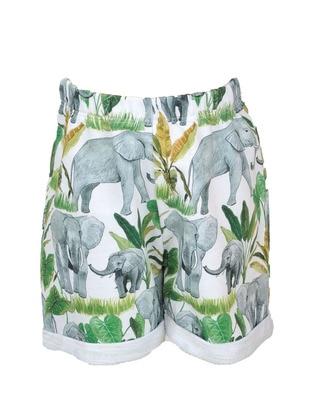 Multi -  - Green - Boys` Shorts
