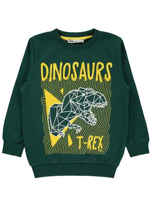 Green - Boys` Sweatshirt - Civil
