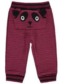Maroon - Baby Bottomwear