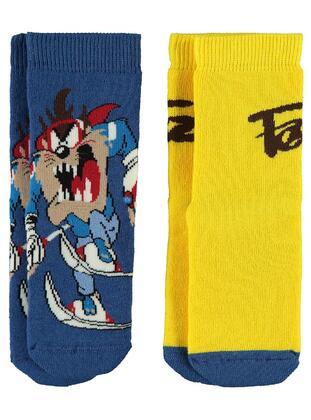 Indigo - Boys' Socks
